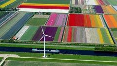 Гледката в Холандия е невероятна - зелени, широки ливади, с черно-бели крави и овце, лалета, а над тях гордо извисени и въртящи се огромни ветрогенератори