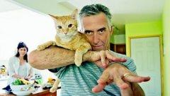 5 симптома, за които да внимавате, когато общувате с коткар