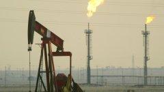 Спадът в цените на петрола за ден е най-голям от 1991 г. и войната в Персийския залив насам