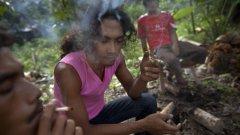 """Наркотик, който лекува зависимост, или """"законен хероин"""": Новата мания в САЩ - кратомът"""