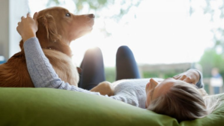 Защо за кучетата са важни не само командите, но и тона ви