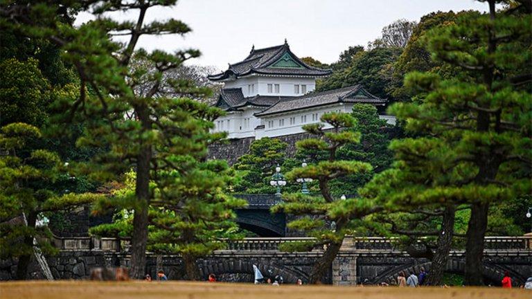 Императорски дворец (лека атлетика)