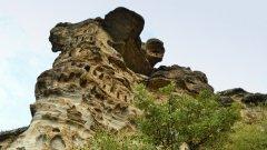 Скалните ниши край село Лисиците ревниво пазят своите тайни. Край тях, през старокаменната епоха, траките са извършвали своите ритуали, свързани с култа към слънцето