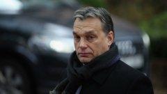 Спортът има централна роля в политиката на Орбан. Но защо?