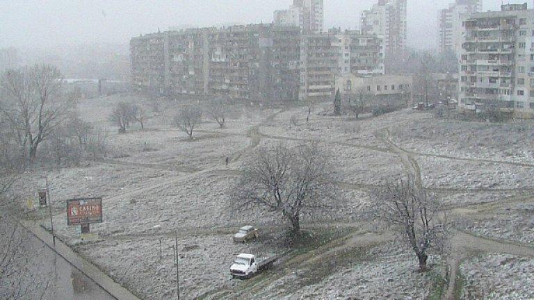 Януари (2010)