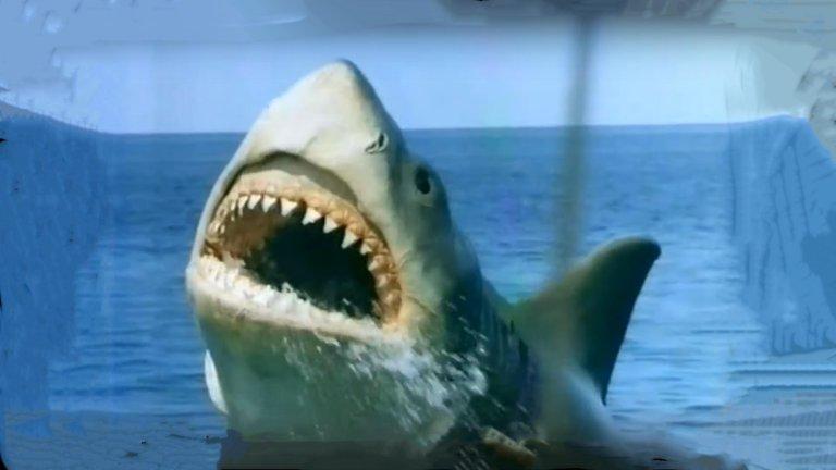 """""""Челюсти: Отмъщението"""" Уважаваме първата част на """"Челюсти"""" въпреки наивния вид на акулата. Все пак, за основа тук стои романът на Питър Бенчли, лентата е дело на Стивън Спилбърг, а Джон Уилямс създава един великолепен и запомнящ се саундтрак. Вторият филм обаче пада много надолу, макар и да е донякъде поносим. Третият вече удря дъното. Акулата ръмжи като лъв, има телепатична връзка с жената на шериф Броуди, Елън. Звучи зле и е такова."""