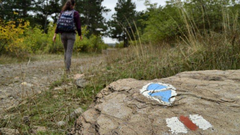 От село Широко поле започва маркирана туристическа пътечка, която отвежда до въжения мост на село Лисиците