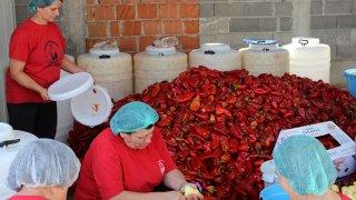 Вдовиците от Круша днес са символ на възраждането и волята за живот и за оцеляване