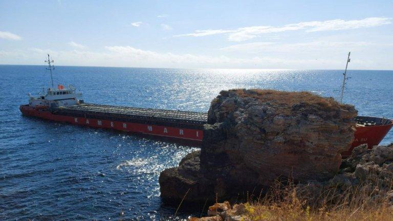 Помощ! Калинките спасяват Черно море от екокатастрофа