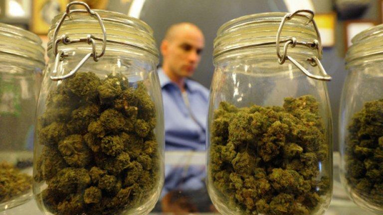 Уругвай ще развива индустрия на марихуаната