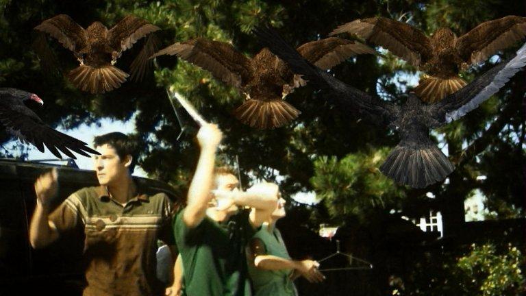"""""""Birdemic: Shock And Terror"""" През 1963 г. Алфред Хичкок възкреси романа на Дафни дю Морие """"Птиците"""" в едноименния филм и беше прекрасно. Единственото, по което си приличат """"Птиците"""" и """"Birdemic: Shock And Terror"""" обаче е, че и в двата филма има птици. Този епичен ужас е дело на виетнамския софтуерен търговец Джеймс Нгуен и първоначално получава отказ да дебютира на фестивала """"Сънданс"""" през 2009 г. Нгуен обаче е твърдо решен да реализира мечтата си филмът му да види свят и започва да го промотира, обикаляйки улиците с ван, натъпкан с птици, фалшива кръв и флайъри. В крайна сметка, постига целта си. Филмът се появява на първа страница на """"The New York Times"""" и влиза в кината, където забавлява зрителите с кухите си диалози и отвратителните опити за визуални ефекти.За да е по-ясно за каква каша става въпрос, сюжетът се върти около бизнесмен от Силициевата долина и приятелката му - модел на бельо, които биват нападнати от гълъгби, плюещи киселина."""