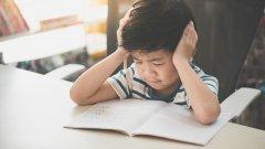 Враждебната образователна среда ражда нов феномен в Япония