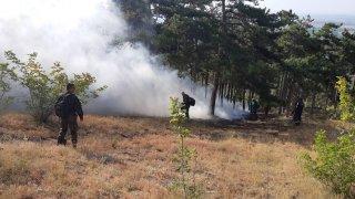 16 жители от село Присадец бяха евакуирани заради близостта на пламъците до населеното място