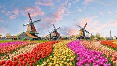 Страната вече ще използва само официалното си име - Нидерландия