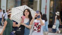Около една четвърт от японците на 20-30-годишна възраст са девствени, констатира проучване