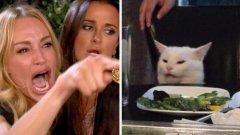 Жена крещи на котка   Видимо разстроена блондинка сочи с пръст и изглежда така, сякаш крещи. Срещу нея във втория кадър е бяла котка, чийто вид може да бъде тълкуван като гневен, объркан, подигравателен или всичко това накуп. Този колаж се превърна в може би най-популярното меме на годината, а интернет и социалните мрежи експериментираха с остроумни реплики, които жената и котката си разменят.   Оказа се, че жената е героиня от риалити шоу, което показва истинския живот на отчаяните съпруги от Бевърли хилс, а кадърът я улавя, докато е изпаднала в истерия заради неприятни клюки по неин адрес. Котката пък всъщност е котарак на име Смъдж, който прави тази крайно недоволна физиономия, защото пред него има сервирана зелена салата, а не нещо по-апетитно. Те нямат нищо общо, но Twitter ги среща в едно меме и сега вече не можем да си представим героите му отделно.