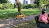 """Известният жълто-черен робот на Boston Dynamics може и да """"говори"""""""