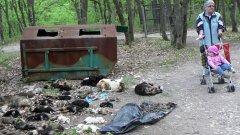 """Войната взима своите жертви и от двете страни. В случая: дете гледа телата на 45 отровени от неизвестно лице кучета, които представители на фондация """"Тирхилфе Зюден – Австрия"""" откриха натъпкани в контейнер в хасковската зоологическа градина миналата година"""