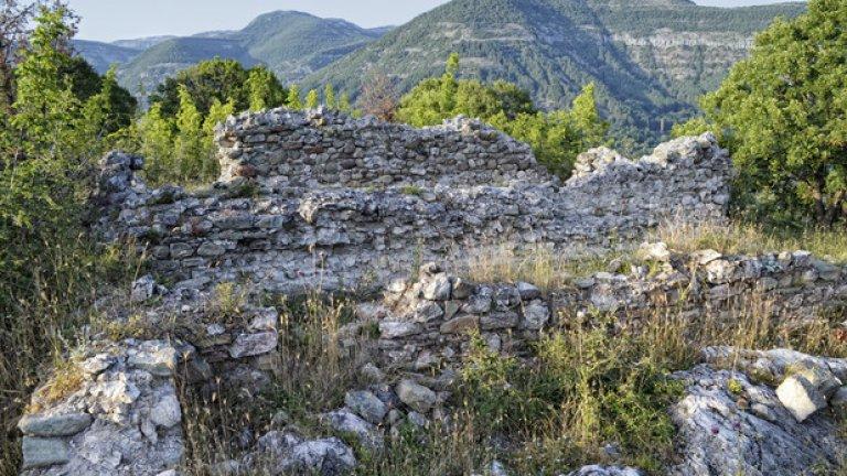 Останките от няколко жилищни сгради, обрасли с гъста растителност