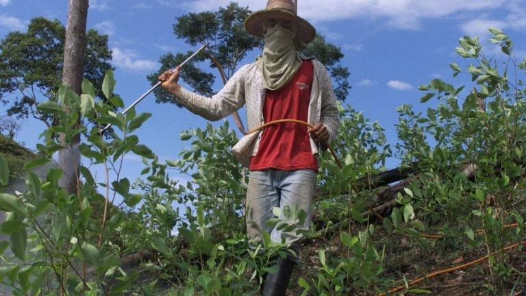 Миннодобивни фирми, фермери на кока и престъпни банди водят до социална дегенерация, замърсяване и крайни степени на насилие в една област в западна Колумбия.