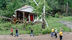 Дете на 10 години е ударено от паднало дърво
