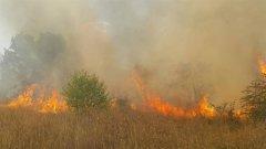 """Големият пожар в местността """"Камбаните"""" в София е унищожил общо 5 декара растителност"""