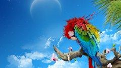 Папагалите, които са изцяло леваци или десняци, са по-бързи от птиците с еднакви умения на двата крака, когато трябва да уловят храна...