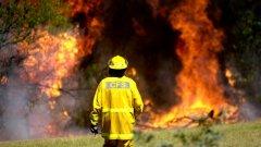1000 пожарникари се борят с пламъците в щата Нов Южен Уелс (снимка: Getty, архив)