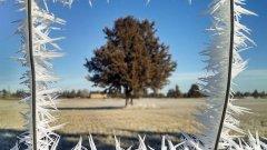 Подобни снимки са възможни единствено и само през най-студения сезон. Затова вместо да се мръщим на снега и леда, нека грабнем фотоапаратите и да снимаме