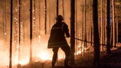 Соиред информации от свидетели заради огъня е затруднено движението по пътя между Солун и Неа Муданя