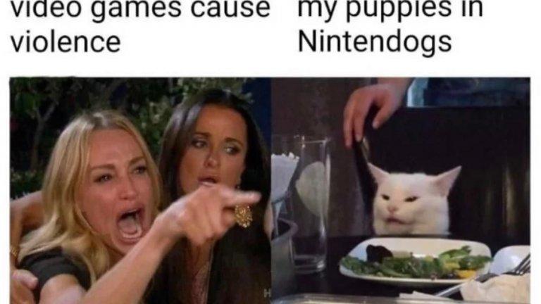 1. Майка ми, която крещи, че видеоигрите водят до насилие... 2. Аз, докато се грижа за кутретата си в Nintendogs