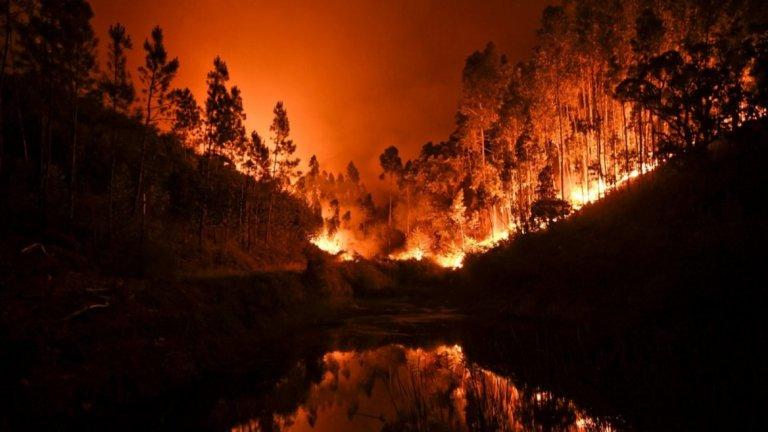 Стотици пожарникари се борят с огнената стихия