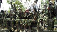 "Реален съюз ли се задава, или ""Боко Харам"" само спекулира"