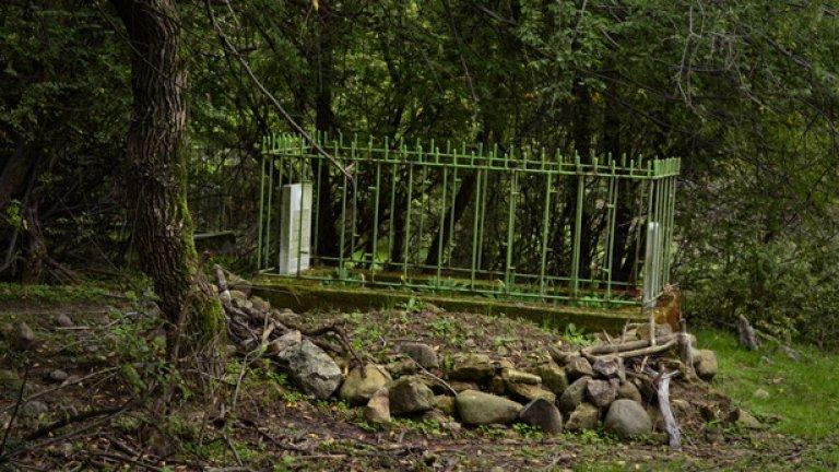 Гробището на Лисиците е скрито сред зелена букова горичка. Само то увеличава популацията си в региона...