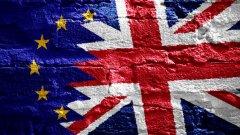 """""""Ние, долуподписаните, призоваваме правителството да приложи правилото, според което, ако гласувалите за или против (членството в ЕС) са по-малко от 60%, а участието на избирателите - под 75%, то трябва да бъде проведен нов референдум"""", се казва в текста."""