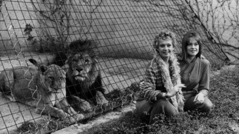 Маршъл и Хедрен първоначално създават проекта след пътешествие до Африка, което ги кара да пожелаят да предадат на екрана съдбата на живите животни, губещи естествения си хабитат и които са жертви на търговията с кожи и слонова кост