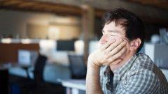 Съвременният офис е място на екзотични обитатели. Запознайте се с четирите основни сред тях