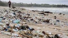 Светът трябва да се изправи пред токсичните резултати от любовта ни към пластмасата. Дали природата може да ни предложи алтернативи?