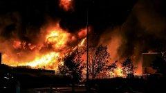 Обхванати oт пожара са около 150 дка горски масив в райна на Златоград