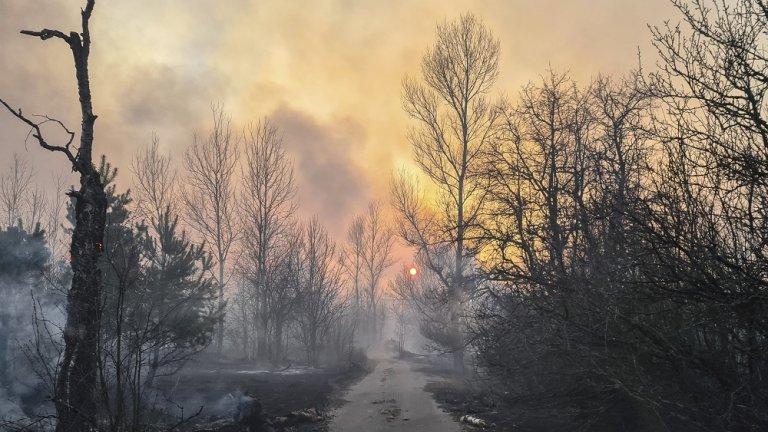 Властите казват - бъдете спокойни, докато екоактивисти алармират за радиоактивни облаци