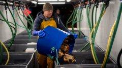 Най-засегнат е риболовът, един от най-ценните за Острова бизнеси
