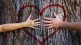COVID не може да ги раздели: Двойките, за които държавните граници не са пречка