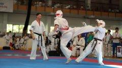 """Първото издание на Световната купа по киокушин """"Варна"""" на KWU се проведе в рамките на 13-ия Международен лагер по карате киокушин, който тече дори в момента в Камчия."""