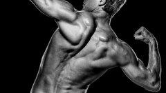 С правилно хранене и подходящи тренировки, добрата форма е гарантирана.