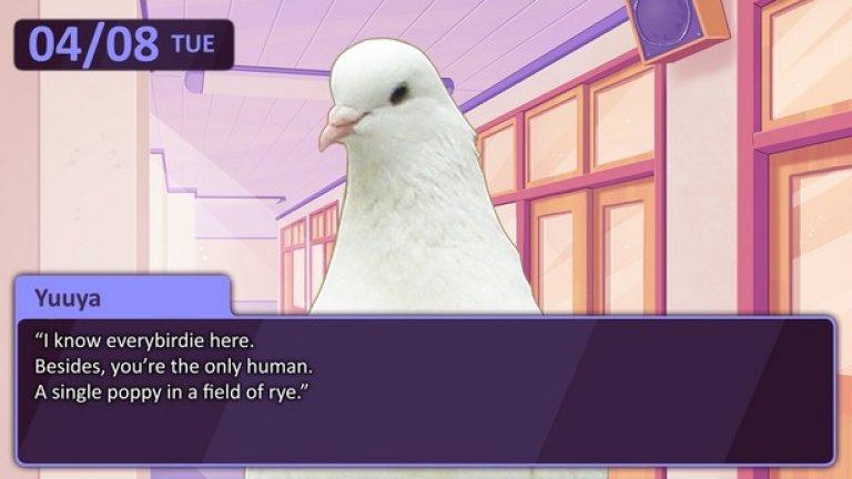 Сред най-странните е Hatoful Boyfriend, където трябва да осъществите успешна свалка с птица