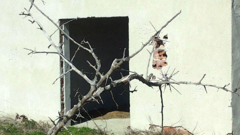 На остров Персин дори и растителността е жестока. Тръни и остри клони си пробиват път сред руините