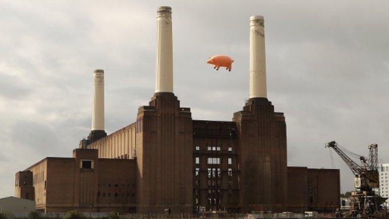 Огромно надуваемо прасе летя над лондонската електростанция Battersea по повод преиздаването на 14 студийни албума на британската рок група Pink Floyd