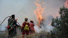 Това е най-тежкият пожар в района от август 2007 г., който отне живота на десетки души