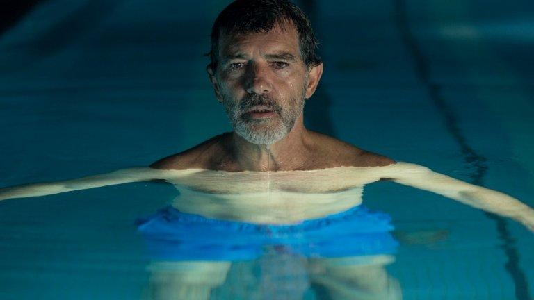 """Болка и величие   Всички филми на Педро Алмодовар са не просто лични, а изповедни, но биографичната нотка в """"Болка и величие"""" е това, което ще ви хипнотизира в тази драма. Антонио Бандерас влиза в образа на Салвадор Майо – застаряващ режисьор, който се обръща към миналото и преосмисля живота си.   Той си спомня за сексуалното си пробуждане, любовните си провали, своите идоли в киното, както и за бедното му детство и усилията на майка му да оцелеят. Ролята на Бандерас е отличена с наградата за най-добър актьор на филмовия фестивал в Кан.   """"С Педро сме приятели вече 40 години. Най-трудно ми бе да намеря решение – как да го изиграя, без да го имитирам? За мен това бе много важно. Явих се пред него като обикновен войник: свалих медалите си; свалих всичко и се постарах да бъда максимално разголен, да започна от нищото – без маниеризмите, използвани от мен преди, без обичайните актьорски клишета. Това е много болезнено. Озоваваш се се на доста некомфортно място. Елиминирах всички тези зони на комфорт и чак тогава започнахме"""", казва Бандерас за работата си по филма с Алмодовар.  Прожекцията е на 23 ноември от 19:00 часа в зала 1 на НДК."""