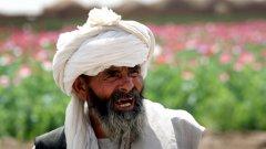 Производството на опиум в Афганистан, оценявано на близо $2.8 млрд. трудно би могло да се трансформира в индустрия за биогориво...